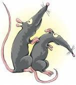 One rat scratches another rat's back — Stock Vector