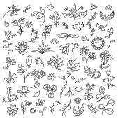 Floral Design Elements Outlines — Stock Vector