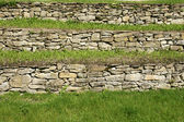 Stones and grass — Stock Photo