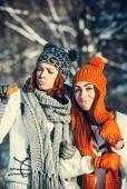 两个女孩的朋友,在冬季户外 — 图库照片