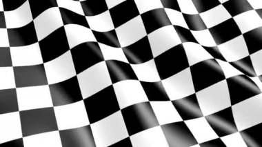 Race checkered flag — Stock Video
