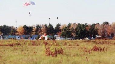 Parachutists landing, the plane — Stock Video