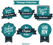 Vector Set Vintage Badges — Stock Vector