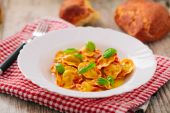 Ravioli with tomato sauce — Stock Photo