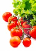 Lettuce Salad And Tomatoes Isolated On White — Stock Photo