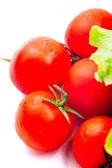 Cherry tomatoes isolated on white — Stock Photo