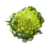 Roman cauliflower — Stock Photo