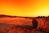 Balles de foin dans les collines toscanes au crépuscule — Photo