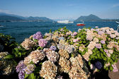 Stresa on Lake Maggiore in Italy — Stock Photo