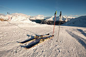 Skis in snow on italian alps — Stock Photo