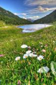 Alpine lake in Italian Alps — Stock Photo