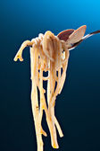 Spaghetti with clams on fork — Stock Photo