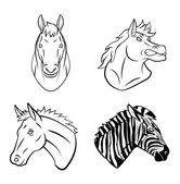 馬とシマウマのコレクション — ストックベクタ