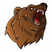 Bear head — Stock Vector