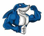 Shark Muscle — Stock Vector