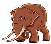 Elephant trunk — Stock Vector