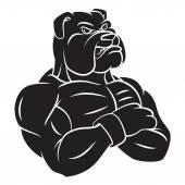 Bulldog strong mascot Tattoo — Stock Vector