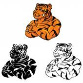 Strong Tigers  collection — Stock Vector