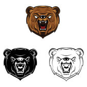 Bear heads collection — Stock Vector