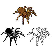 Coloring book Tarantula cartoon character — Stockvektor