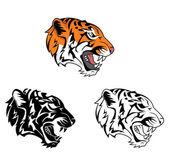 Coloring book tiger roar cartoon character — Stock Vector