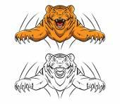 Coloring book Tiger cartoon character — Stock Vector