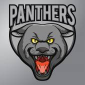Panthers mascot — Stock Vector