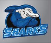 Sharks Mascot — Stock Vector