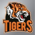 Tigers mascot — Stock Vector #73351573