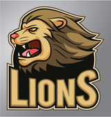 Lions mascot — Stock Vector