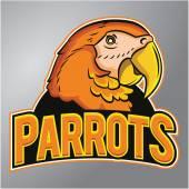Parrots mascot — Stock Vector