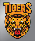 Tigers mascot — Stock Vector