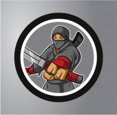 Ninjas Circle sticker — Stock Vector
