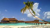 View of the coast of irufushi island with water bungalows, maldives — Stock Photo