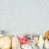 Abstract background made of shells on sand — Stock Photo
