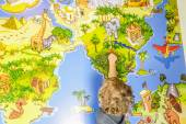 Child is traveling with a stick on the map of the world — Stock Photo