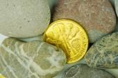 Real value hidden under pebble stones — Stockfoto
