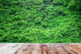 Wooden floor and green trees — Stock Photo