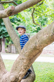 Smiling boy is climbing on the tree — Stock Photo
