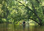 Young couple canoeing on still backwater — Stock Photo