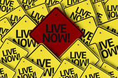 Live Now! written on multiple road sign — Stock Photo