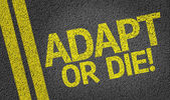 Adapt or Die — Stock Photo