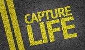 Capture Life written on road — Stock Photo