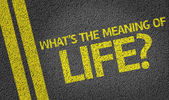 What's the Meaning of Life? written on the road — Foto de Stock