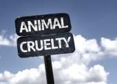 Animal Cruelty  sign — Stock Photo