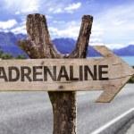 Постер, плакат: Adrenaline wooden sign