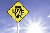 True Love Never Dies  road sign — Стоковое фото