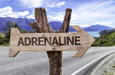 Adrenaline  wooden sign — Stock Photo