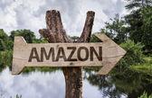 амазонка деревянный знак — Стоковое фото