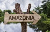 Amazonia  wooden sign — Stock Photo
